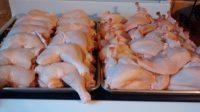 raw chickens