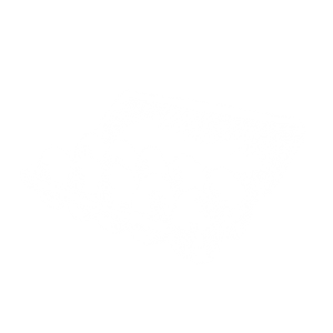 eggs drawing